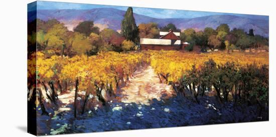Vineyard Afternoon-Philip Craig-Stretched Canvas Print