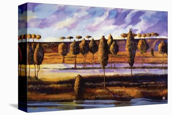 Violet Sky over Land and Water-Judith D'Agostino-Stretched Canvas Print