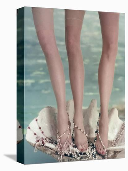 Vogue - July 1954 - Three Legs in a Half-Shell-John Rawlings-Stretched Canvas