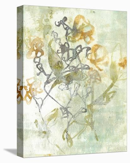 Washed Floral I-Jennifer Goldberger-Stretched Canvas Print