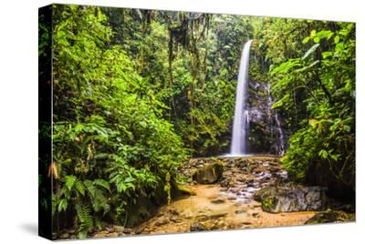 Waterfall San Vincente In An Area Of Jungle Called Mashpi Cloud Forest In The Choco Rainforest Photographic Print Matthew Williams Ellis Art Com