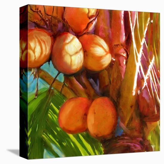 WaterPalm 01-Rick Novak-Stretched Canvas Print