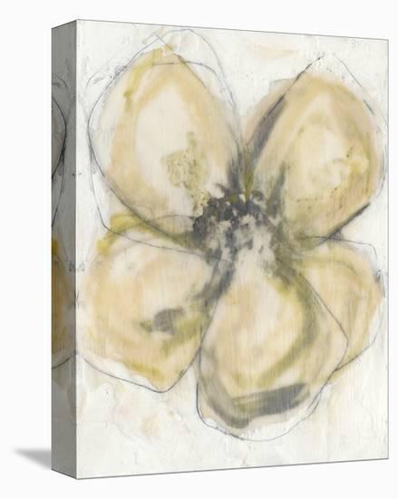 Waxen Petals II-Jennifer Goldberger-Stretched Canvas Print