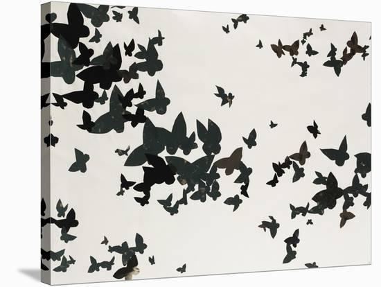 Winged Flight-Sydney Edmunds-Stretched Canvas Print