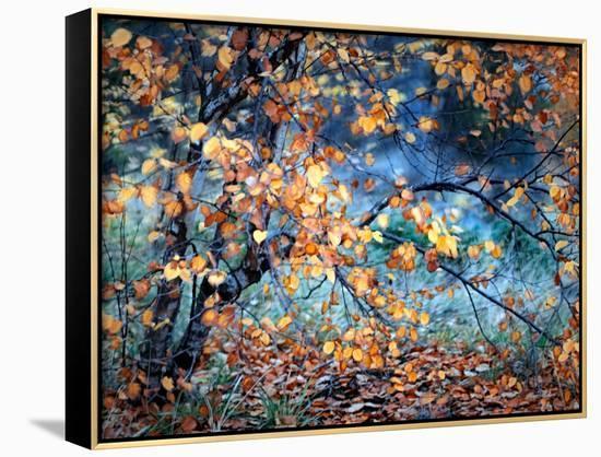 Yellow Heart-Ursula Abresch-Framed Canvas Print
