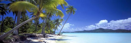 0130 Tropical Paradise-Doug Cavanah-Giclee Print