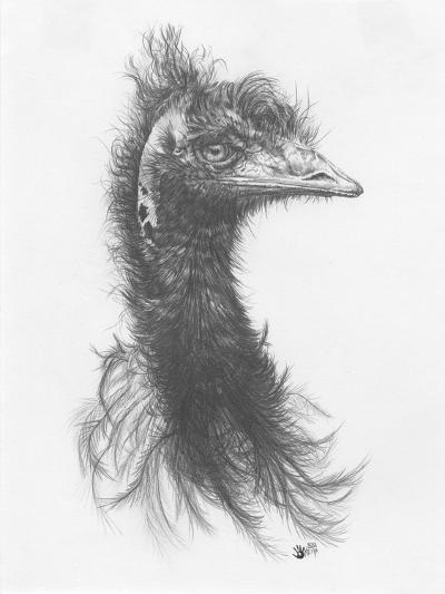 100% Humidity-Barbara Keith-Giclee Print