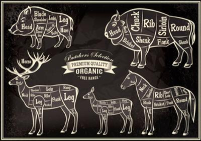 Vector Diagram Cut Carcasses Boar, Bison, Deer, Horse by 111chemodan111
