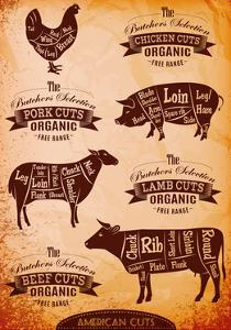 Vector Diagram Cut Carcasses Chicken, Pig, Cow, Lamb by 111chemodan111