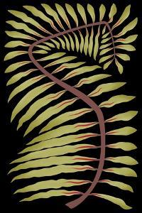 Palm Frond III by 12.0