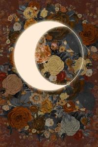 Dark Floral Lunar Eclipse by 13.0