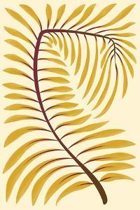 Palm Frond II by 13.0