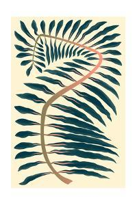 Palm Frond IV by 13.0
