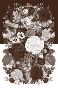 Sepia Flowerbed by 13.0