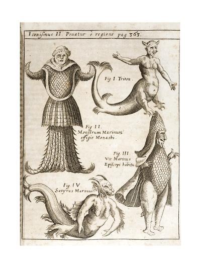 1662 Schott Sea Monsters And Mermaids-Stewart Stewart-Giclee Print