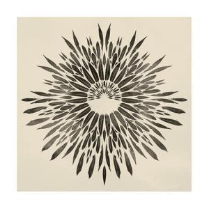Feathers Mandala II by 18.0