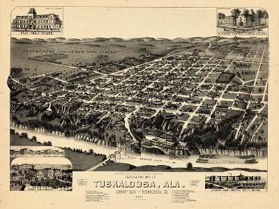 1887, Tuskaloosa Bird's Eye View, Alabama, United States--Giclee Print