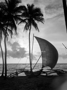 1930s Single Catamaran on Tropical Beach at Sunset Palm Trees Sri Lanka