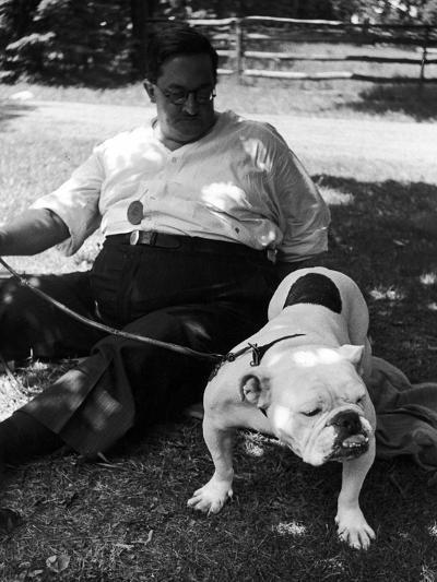 1938 Morris + Essex Dog Show. English Bulldog--Photographic Print