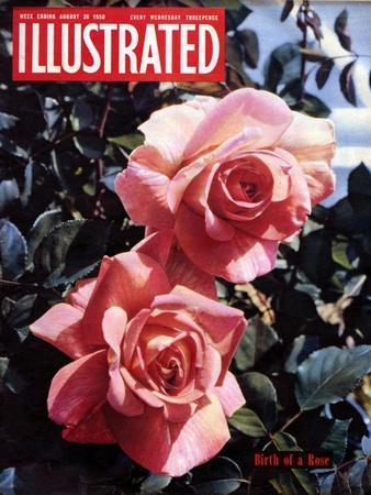 https://imgc.artprintimages.com/img/print/1950s-uk-illustrated-magazine-cover_u-l-pn7zwj0.jpg?p=0