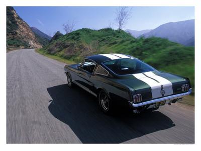 1966 Shelby GT350-David Newhardt-Giclee Print