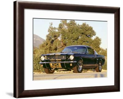 1966 Shelby GT350H-David Newhardt-Framed Giclee Print