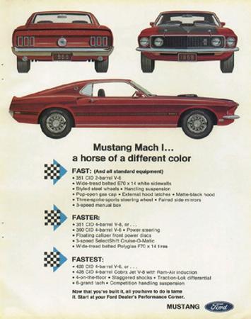 1969 Mustang - Mach 1 Horse