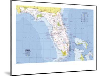 1973 Close-up USA, Florida Map-National Geographic Maps-Mounted Art Print