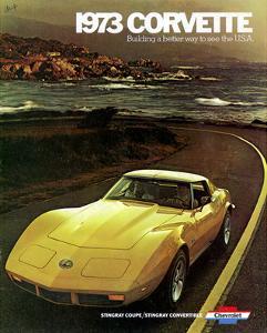 1973 Corvette - to See the Usa