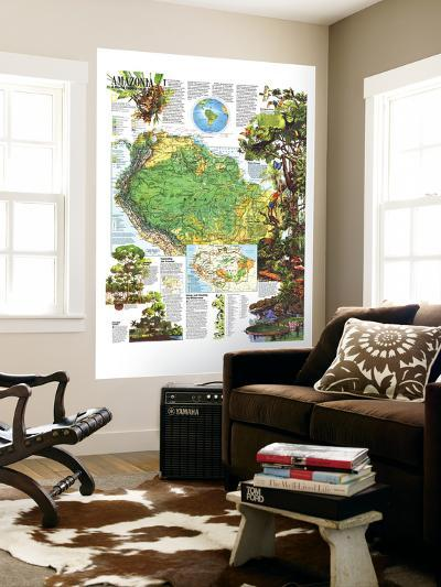 1992 Amazonia, a World Resource At Risk Map-National Geographic Maps-Wall Mural