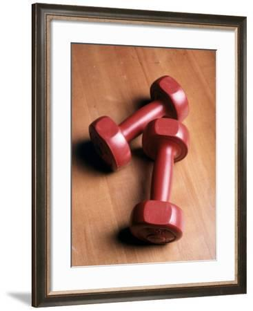 2.5 lb. Weights--Framed Photographic Print