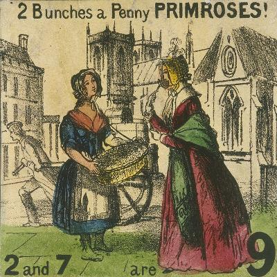2 Bunches a Penny Primroses!, Cries of London, C1840-TH Jones-Giclee Print