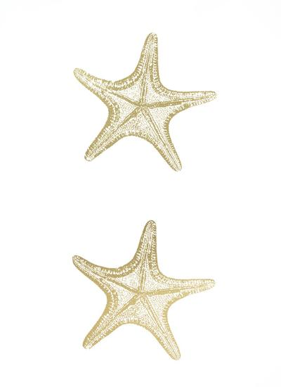 2-Up Gold Foil Starfish II-Vision Studio-Art Print