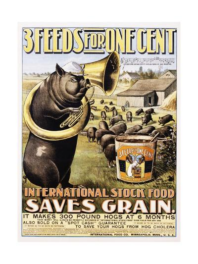3 Feeds for One Cent Poster--Giclee Print