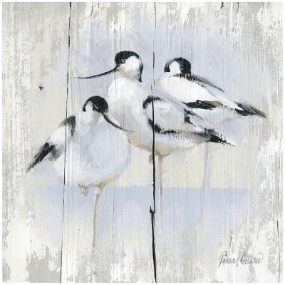 3 Oiseaux-Pascal Cessou-Art Print