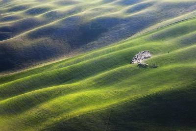 300-Marcin Sobas-Photographic Print