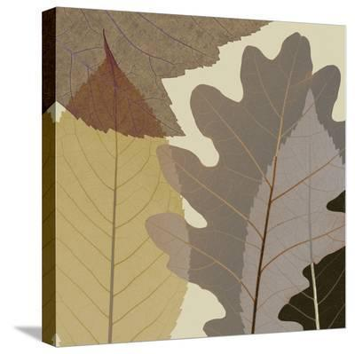 4 Leaves 1-Steven N^ Meyers-Stretched Canvas Print