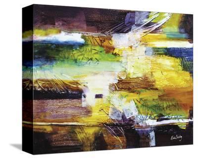 578-Lisa Fertig-Stretched Canvas Print