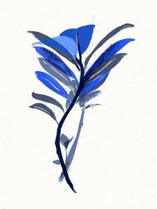 Watercolor Plant III by 7.0