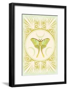 Vintage Luna Moth by 9.0
