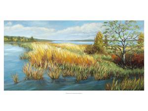 Marsh Edge by A^A^ Pfannmuller