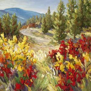 Pine Ridge by A^A^ Pfannmuller
