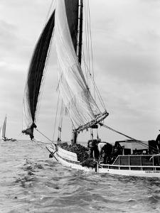 Oyster Haul on Deck by A. Aubrey Bodine