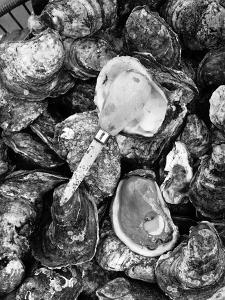 Shucked Oysters by A. Aubrey Bodine