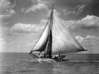 Skipjack, Robert L. Webster