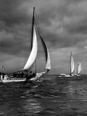 Skipjacks under Darkening Skies by A. Aubrey Bodine