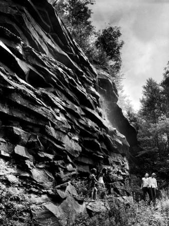 Swallow Falls, Garett County by A. Aubrey Bodine