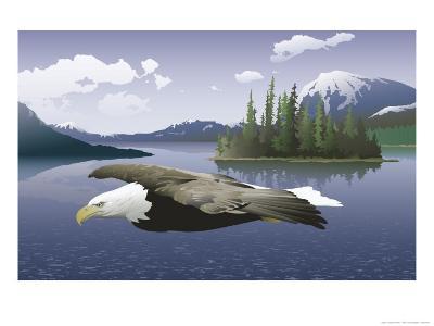 A Bald Eagle Flying Over a Lake--Art Print