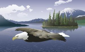 A Bald Eagle Flying Over a Lake