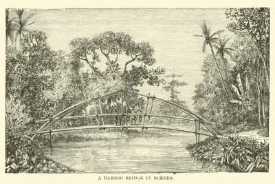 https://imgc.artprintimages.com/img/print/a-bamboo-bridge-in-borneo_u-l-pphekg0.jpg?p=0